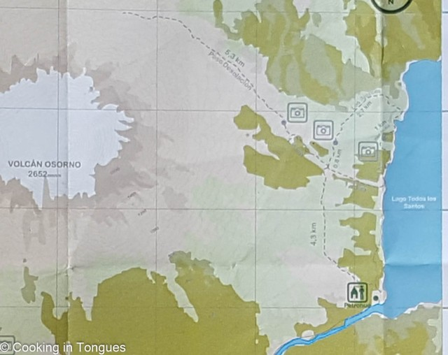 Alerces Trail (1 of 1)-2