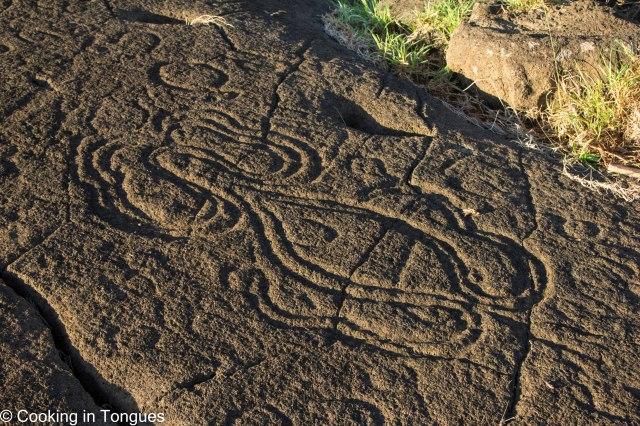 Pavo Vaka Petroglyphs