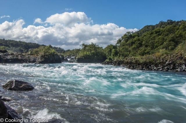 Petrohué River